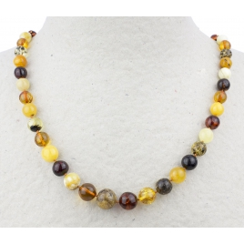 Collier en Ambre multicolore