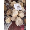 Selenite Geode - diamètre 15/17cm